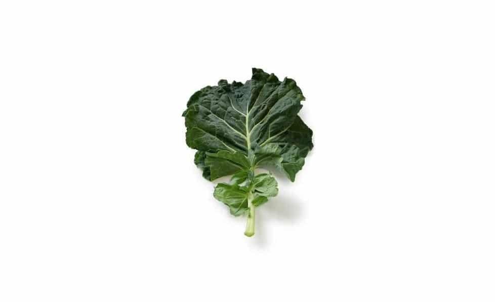 Kuzyn brukselki i kapusty - jarmuż jest ciemnozielonym liściastym warzywem przypominającym warzywa kapustne takie jak botwinka, burak, gorczyca czy rośliny musztardowe.